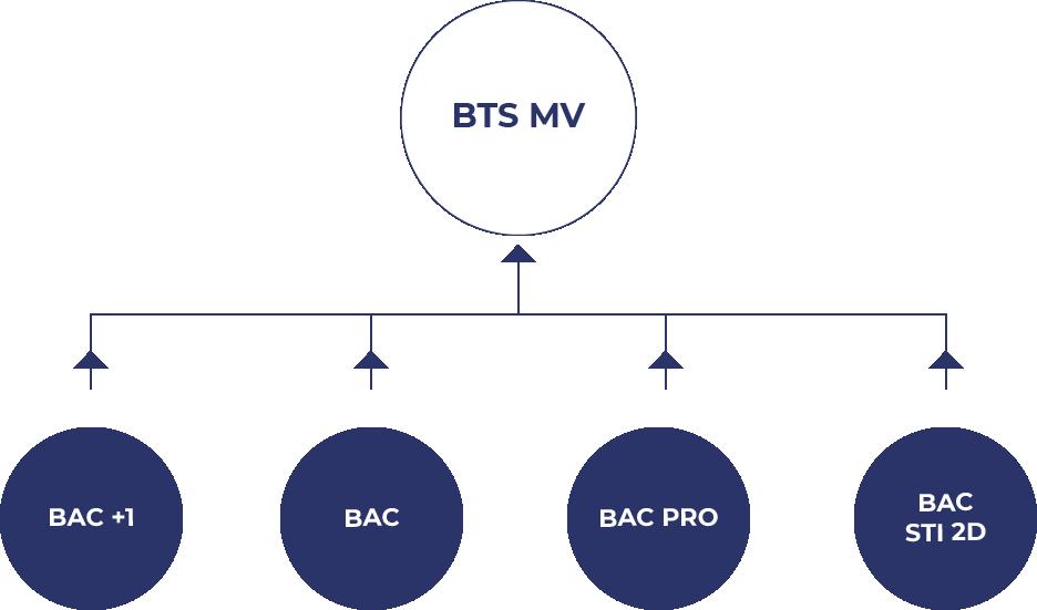 Visuel hierarchique pour accéder à la formation BTS MV