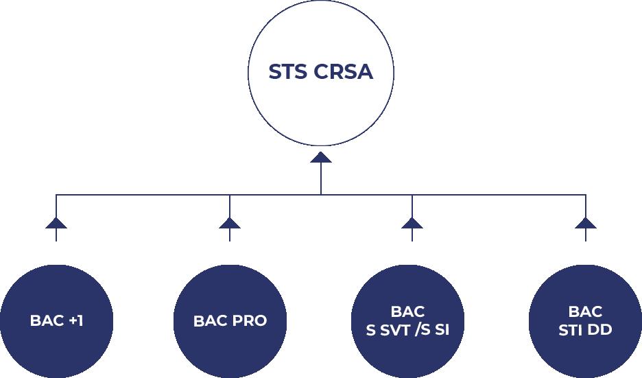 Visuel hierarchique pour accéder à la formation STS CRSA
