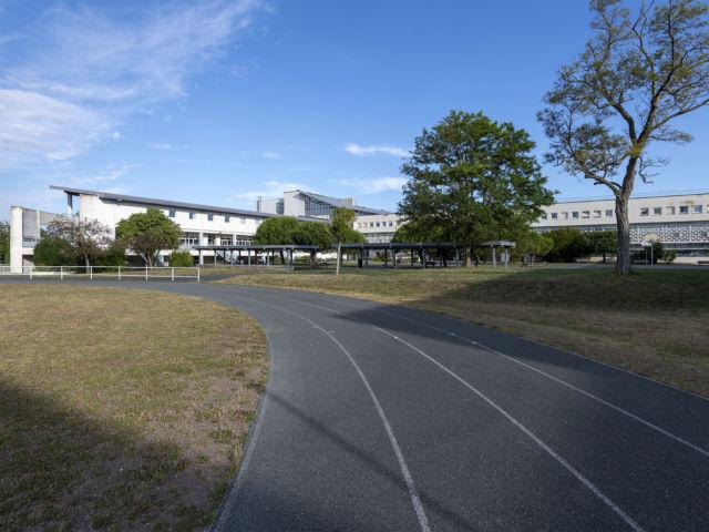 Extérieur terrain et piste de course